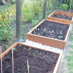 Raised growing beds